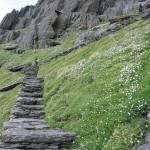 Stufen auf Skellig Micheal
